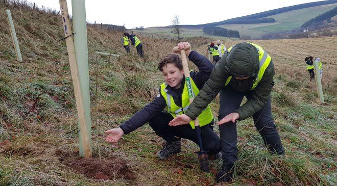 South of Scotland Tree Planting