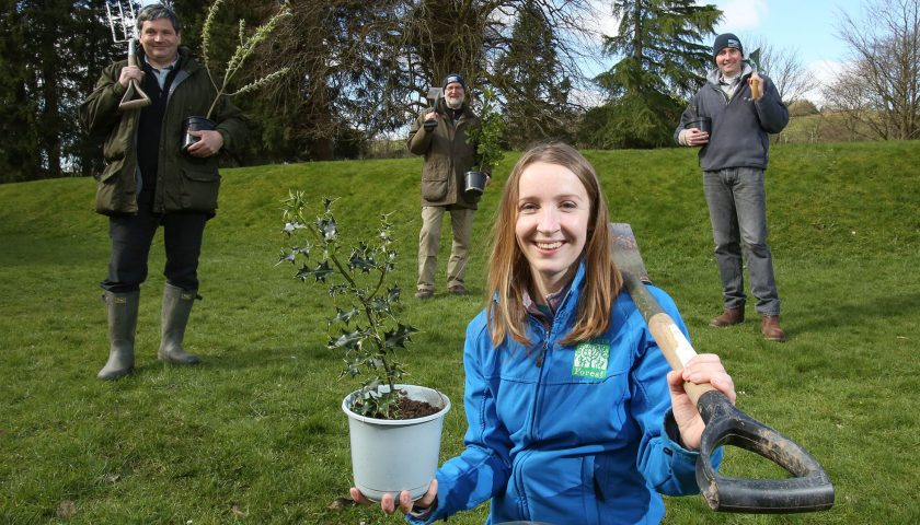South of Scotland Tree Planting
